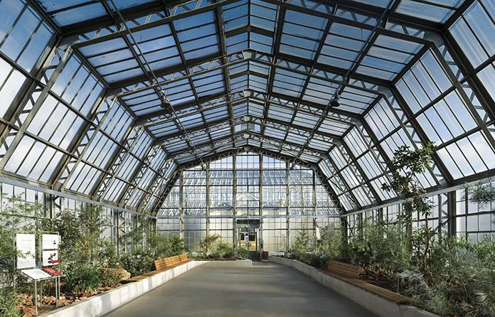Right on Kew: Graham's glasshouse restoration